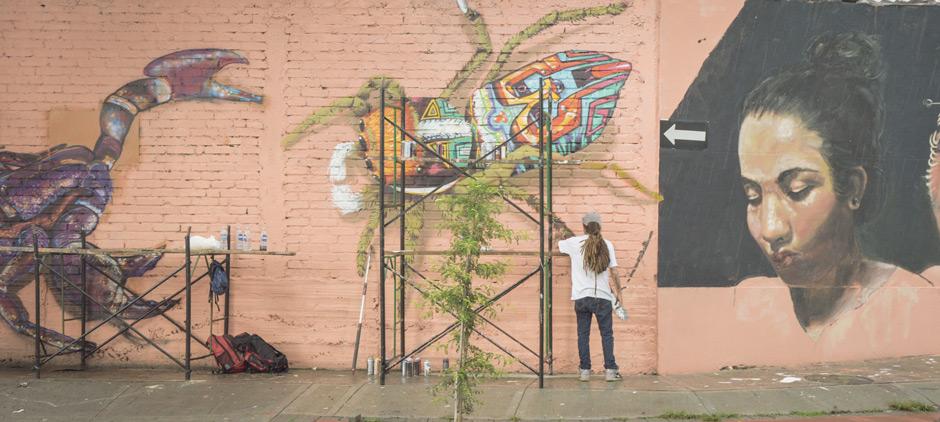 Muros para la cultura