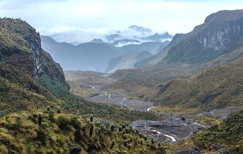 montanas-colombianas
