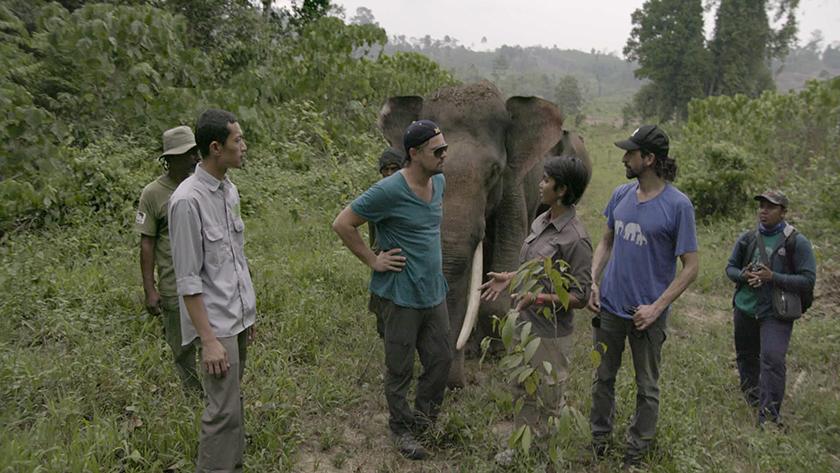 INDONESIA- Leonardo con Farwiza Farhan y Rudi Putra. Tomado de Ecologiaverde