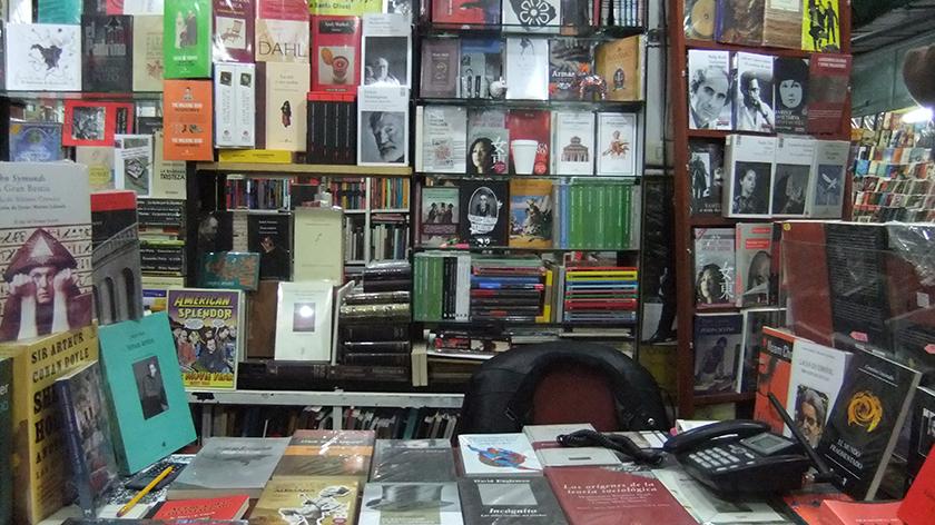 Pequeña librería. Fotografía Camila Muñoz Parietti.